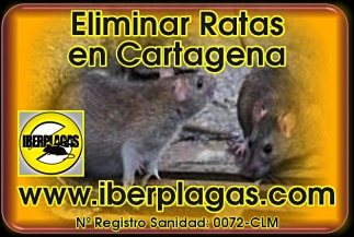 Eliminar ratas en Cartagena