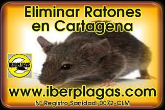 Eliminar Ratones en Cartagena