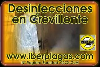 Desinfecciones en Crevillente