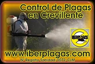Control de Plagas en Crevillente