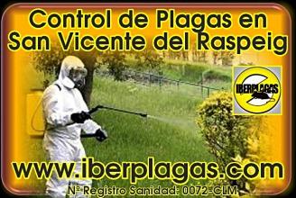 Control de Plagas en San Vicente del Raspeig