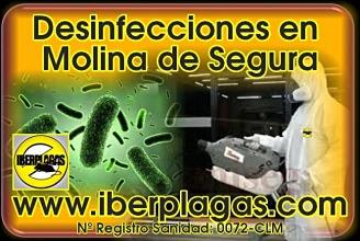Desinfecciones en Molina de Segura