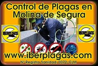 Control de Plagas en Molina de Segura