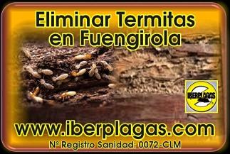 Eliminar termitas en Fuengirola