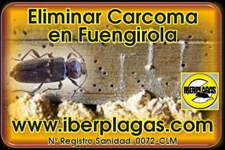 Eliminar Carcoma en Fuengirola