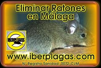 eliminar ratones en Málaga