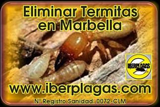 Eliminar termitas en Marbella