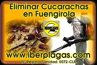 Eliminar cucarachas en Fuengirola