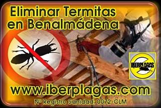 Eliminar Termitas en Benalmádena