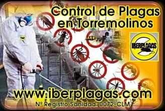 Control de Plagas en Torremolinos