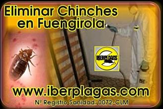 Eliminar chinches de cama en Fuengirola