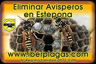 Eliminar avispas en Estepona