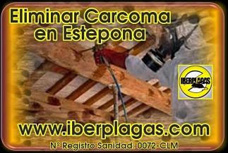 Eliminar Carcoma en Estepona