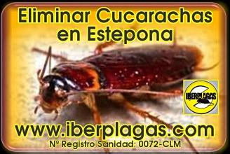 Eliminar Cucarachas en Estepona