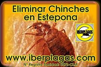 Eliminar Chinches de Cama en Estepona