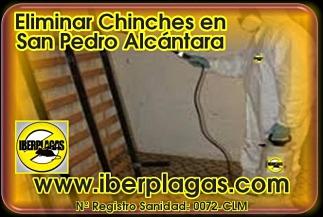 Eliminar Chinches de Cama en San Pedro Alcántara