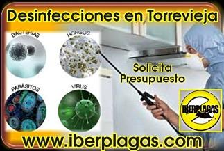 Presupuesto de Desinfección en Torrevieja