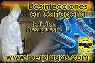 Presupuesto para desinfectar en Cartagena