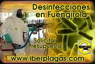 Presupuesto de Desinfección en Fuengirola