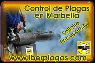Presupuesto Control de Plagas en Marbella