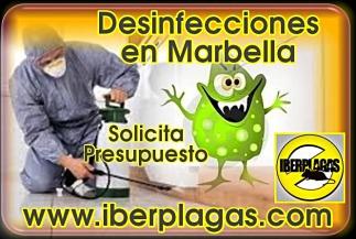 Presupuesto de Desinfección en Marbella