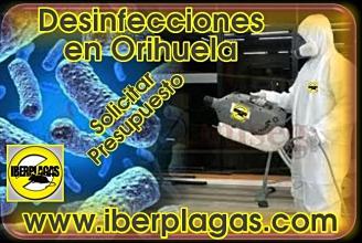 Presupuesto de desinfección en Orihuela