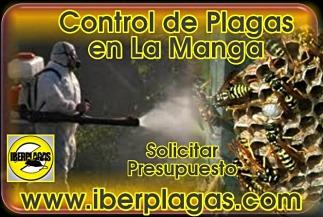Presupuesto Control de Plagas en La Manga