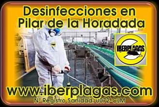 Presupuesto Desinfecciones en Pilar de la Horadada