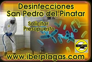 Presupuesto de Desinfección en San Pedro del Pinatar