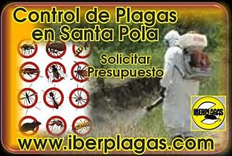 Presupuesto Control de plagas en Santa Pola