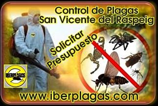 Presupuesto control de plagas en San Vicente del Raspeig