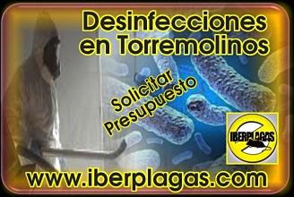 Presupuesto desinfecciones en Torremolinos