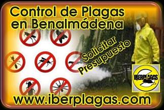 Presupuesto Control de Plagas en Benalmádena