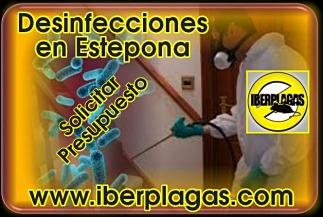Presupuesto desinfecciones en Estepona