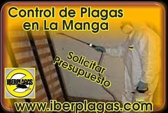 Presupuesto Control de Plagas en La Manga del Mar Menor