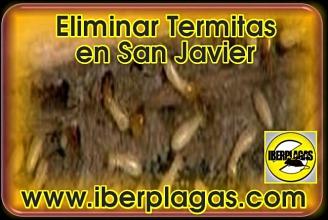 eliminar termitas en San Javier