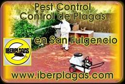 Empresa de control de plagas en San Fulgencio