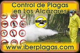 Empresa de Control de Plagas en Los Alcázares