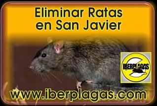 Eliminar Ratas en San Javier