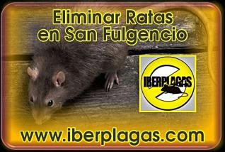eliminar ratas en San Fulgencio