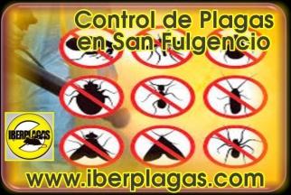 eliminar ratones en Los Alcázares