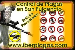 Presupuesto control de plagas en San Fulgencio
