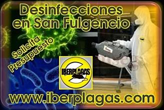 Presupuesto de desinfección en San Fulgencio