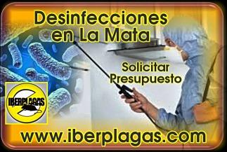 Presupuesto Desinfecciones en La Mata