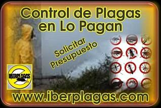 Presupuesto Control de Plagas en Lo Pagan