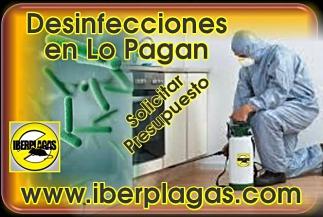 Presupuesto Desinfección en Lo Pagan