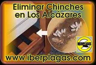 eliminar chinches de cama en Los Alcázares