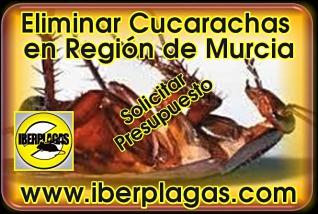 Presupuesto para fumigar cucarachas en Murcia