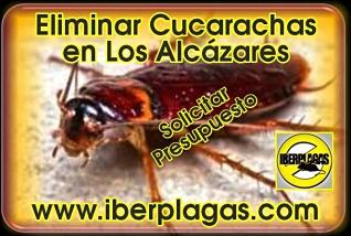 eliminar cucarachas en Los Alcázares