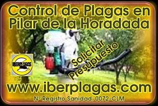 Presupuesto control de plagas Pilar de la Horadada